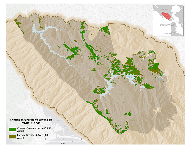Map of Grassland Loss on MMWD lands (AIS, 2008; MMWD, 2016)