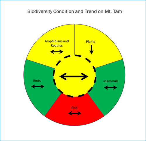 Mt. Tam's overall biodiversity as measured by aggregating groups of key health indicators