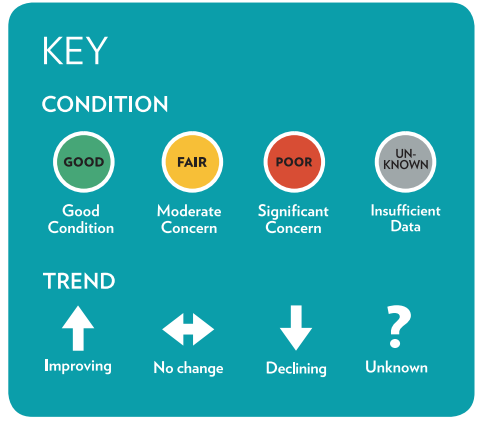 Peak health condition and trend icon key