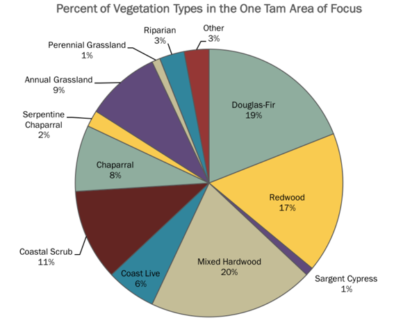 Vegetation percentage