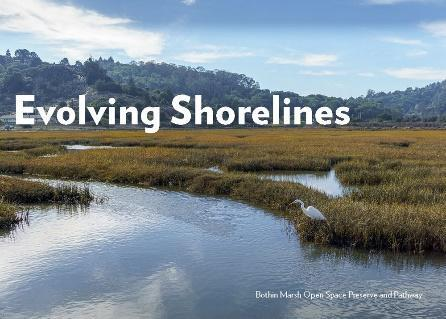 Evolving Shorelines cover image