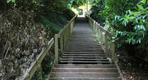 Dipsea Stairs